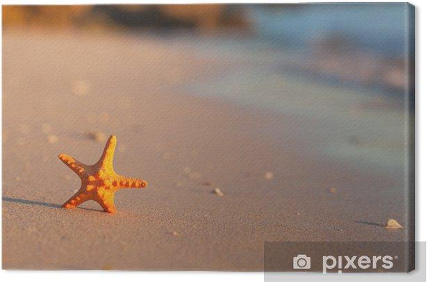 Tableau sur toile Étoiles de mer à la plage - Vacances