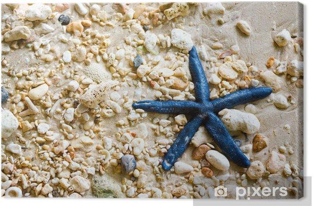 Tableau sur toile Étoiles de mer bleues - Animaux marins
