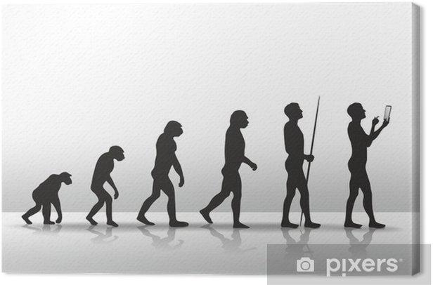 Tableau sur toile Evolution2504b - Tablettes et E-Books