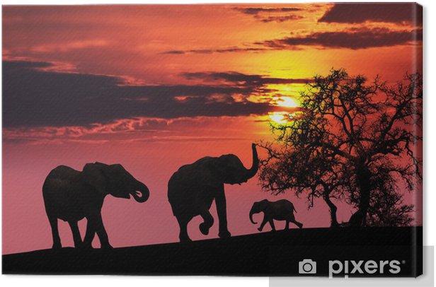 Tableau sur toile Famille d'éléphants au coucher du soleil - Thèmes