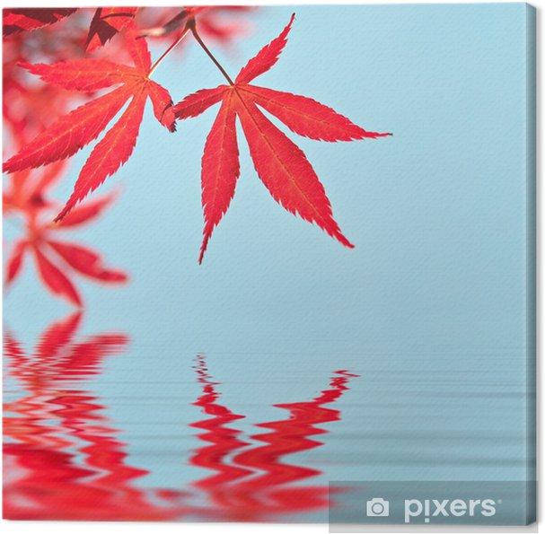 Tableau sur toile Feuilles d\'érable rouge, reflets dans l\'eau ...