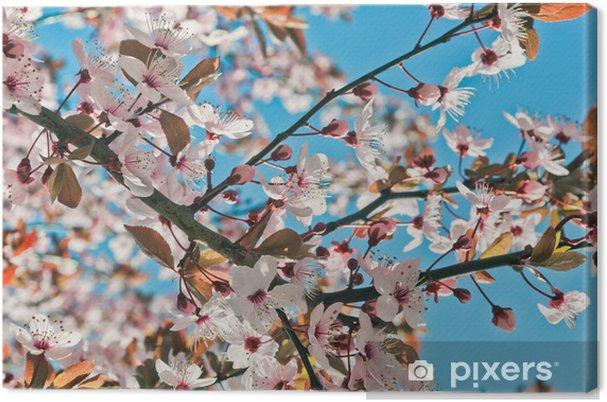 Tableau Sur Toile Fleur De Cerisier Pixers Nous Vivons Pour Changer