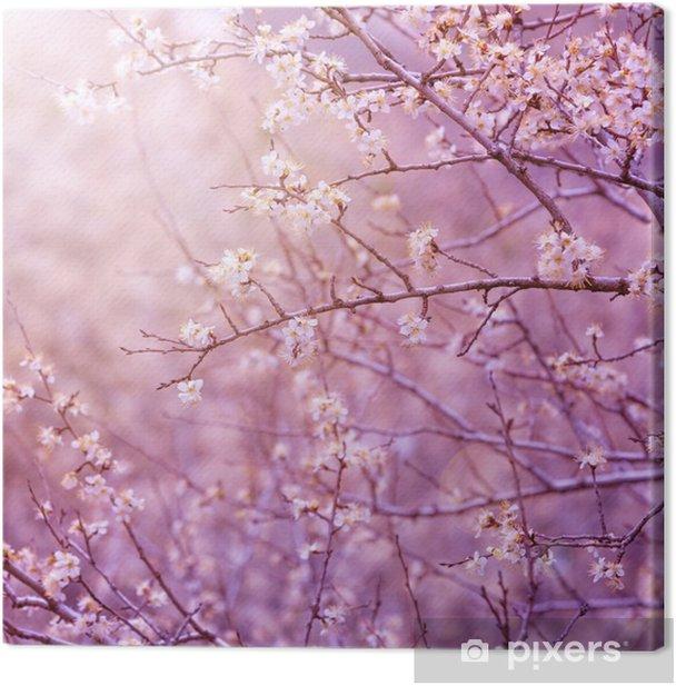 Tableau sur toile Fleur de cerisier - Thèmes