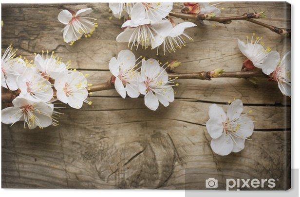 Tableau sur toile Fleur de printemps sur fond de bois - Thèmes