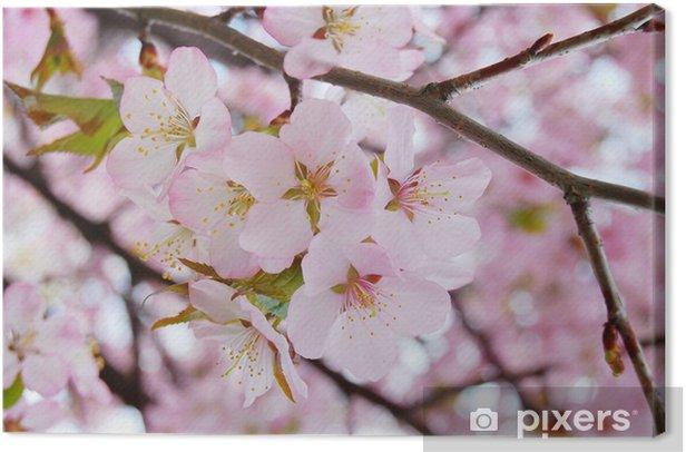Tableau sur toile Fleurs de cerisier - Fleurs