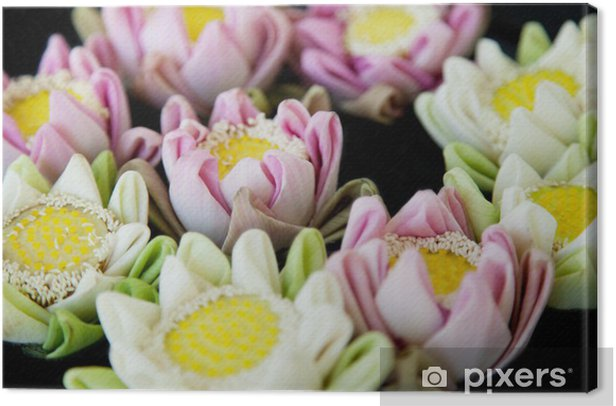 Tableau sur toile Fleurs de lotus spa - Ecologie