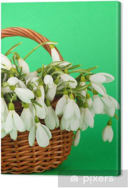 Tableau sur toile Fleurs de printemps perce-neige dans le panier en osier, sur fond de couleur - Fleurs