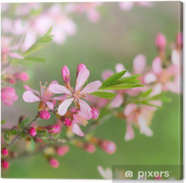 Tableau sur toile Fleurs de printemps - Saisons