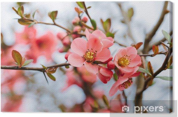 Tableau sur toile Fleurs de printemps - Styles