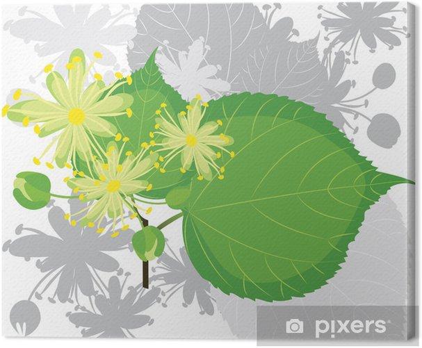 Tableau sur toile Fleurs de tilleul avec le feuillage - Arbres