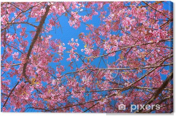 Tableau sur toile Fleurs sauvages de l'Himalaya cerise - Nature et régions sauvages