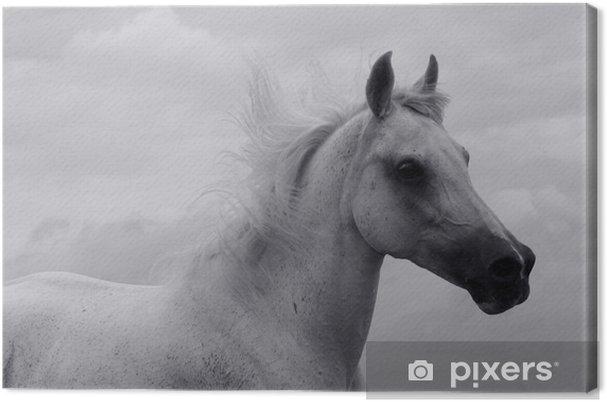 Tableau sur toile Fonctionne en noir et blanc - Styles