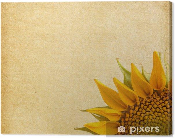Tableau sur toile Fond beige. Agé de texture du papier avec le tournesol - Textures
