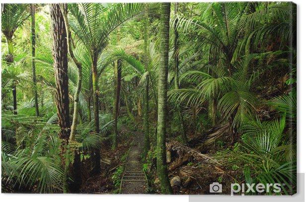 Tableau sur toile Forest tropical - Thèmes