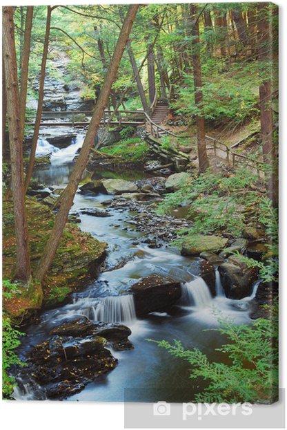 Tableau sur toile Forêt CREEK des sentiers de randonnée - Saisons