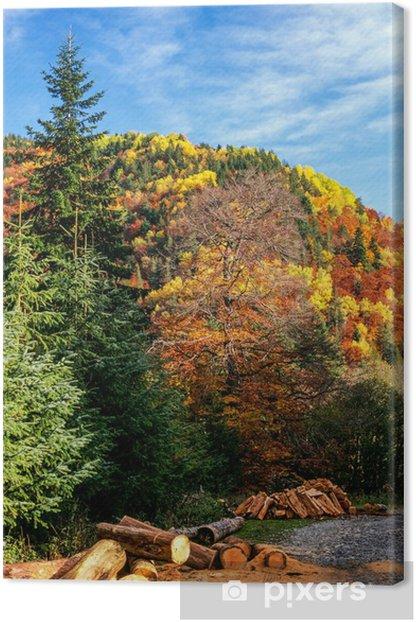 Tableau sur toile Forêt d'automne et les journaux - Forêt