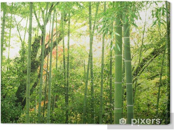 Tableau sur toile Forêt de bambous - Thèmes