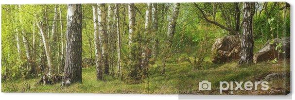 Tableau sur toile Forêt de bouleaux - Thèmes