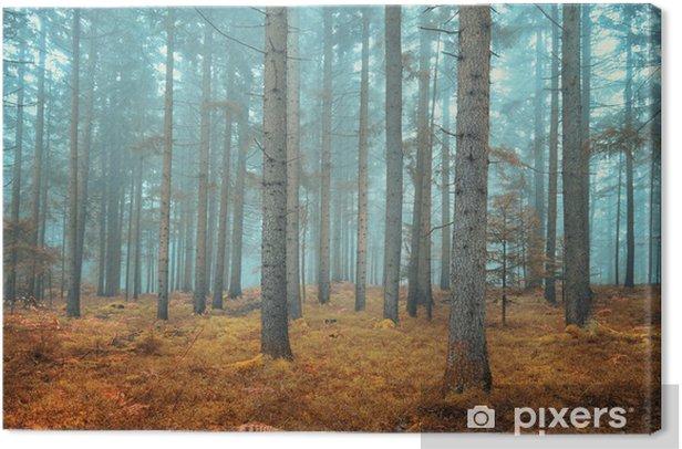 Tableau sur toile Forêt de conifères de rêve - Thèmes