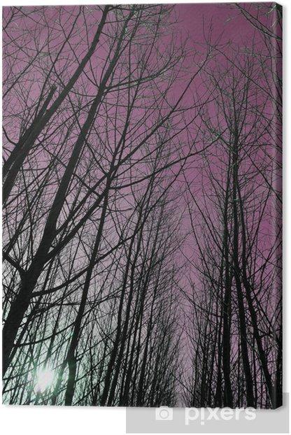 Tableau sur toile Forêt Helloween Effrayant - Esotérisme
