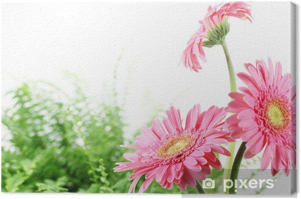 Tableau marguerite rose 3 tableaux sur toile frais marguerite rose