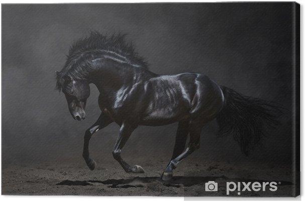 Tableau cheval noir 1 tableaux sur toile galopant cheval noir sur fond sombre
