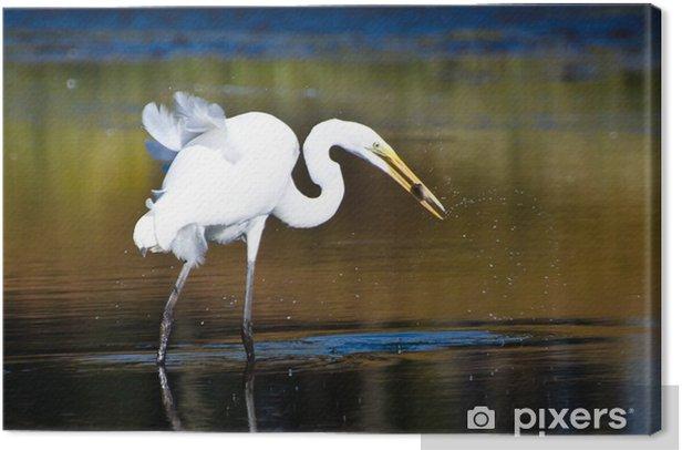 Tableau sur toile Grande Aigrette aux poissons capturés à l'automne - Oiseaux
