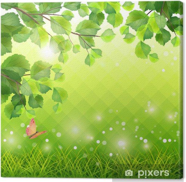 Tableau sur toile Green Grass branche d'arbre papillon fond - Saisons