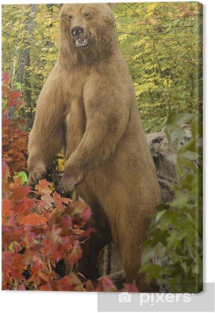Tableau grizzli grizzly 4 tableaux sur toile grizzly bear
