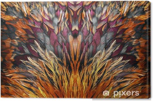 Tableau sur toile Groupe de plumes marron brillant d'un oiseau - Ressources graphiques