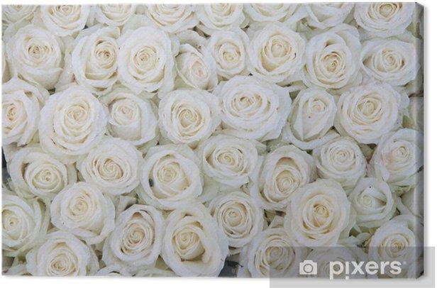 Tableau sur toile Groupe de roses blanches après une averse de pluie - Thèmes