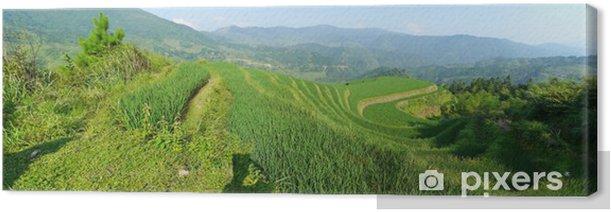 Tableau sur toile Guangxi a Rizières - Asie