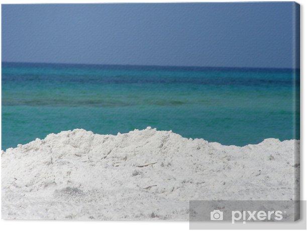 Tableau sur toile Gulf of mexico - Eau