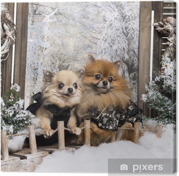 Tableau chihuahua spitz 2 tableaux sur toile habille spitz et de chihuahua sur un pont dans un paysage d 39 hiver