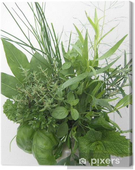 Tableau sur toile Herbes et aromates - Epices, herbes et condiments