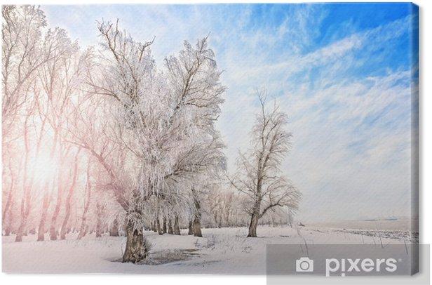 Tableau sur toile Heure d'hiver avec la rivière, les arbres et le soleil brillant sur un côté - Campagne