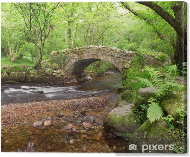 Tableau sur toile Hisley Bridge, Hisley bois, Dartmoor Devon Royaume-Uni - Eau