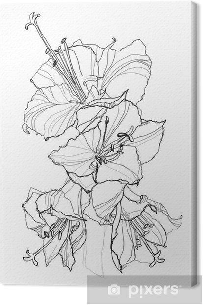 Tableau sur toile Ibiscus - Fleurs