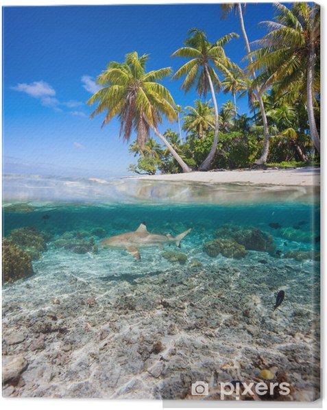 Tableau sur toile Île tropicale sous et au-dessus de l'eau - Requins
