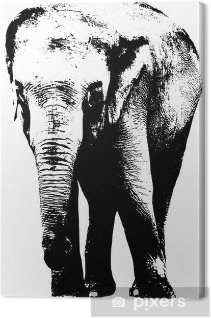Tableau sur toile Illustration de l'éléphant - Mammifères