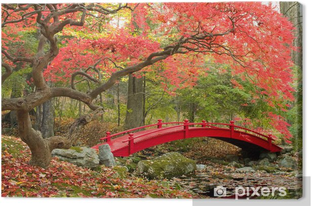 Tableau sur toile Japanese garden - Styles