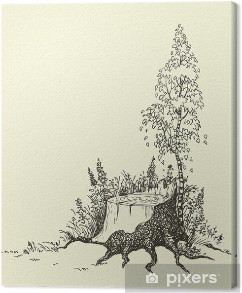 Tableau sur toile Jeune bouleau - Art et création