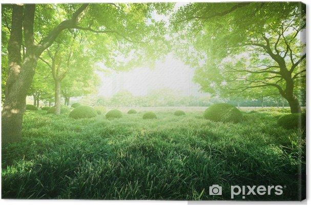 Tableau sur toile Journée ensoleillée dans le parc de l'été - Villes d'Asie