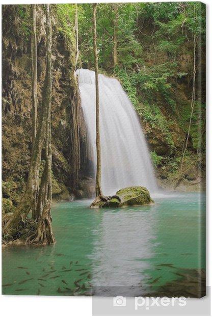 Tableau sur toile Jungle cascade - Paix