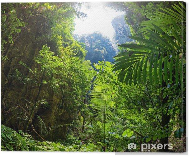 Tableau sur toile Jungle forest - Thèmes