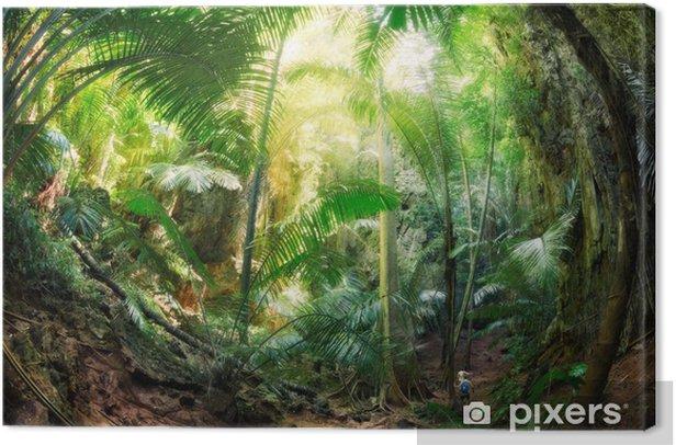 Tableau sur toile Jungle Krabi Thaïlande - Palmiers