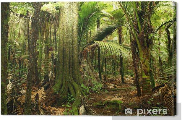 Tableau sur toile Jungle - Thèmes