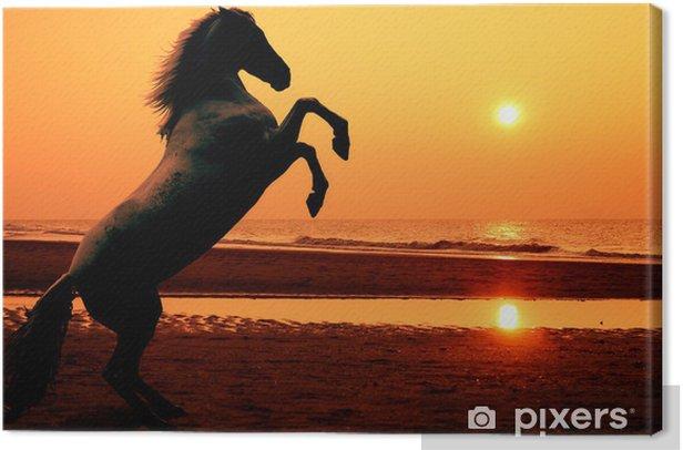 Tableau sur toile L'élevage de chevaux au coucher du soleil - Thèmes