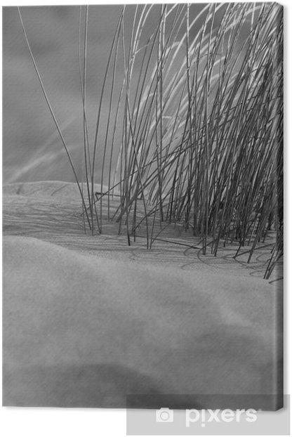Tableau sur toile L'herbe plage en noir et blanc - Eau