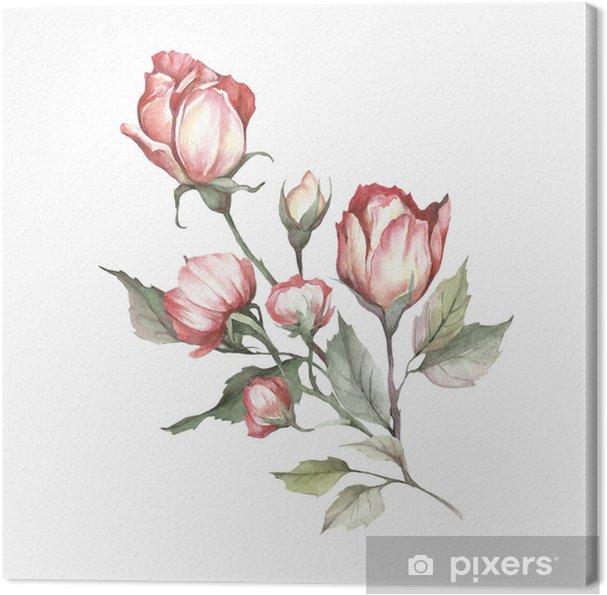 Tableau Sur Toile L Image D Une Rose Hand Dessiner Une Illustration